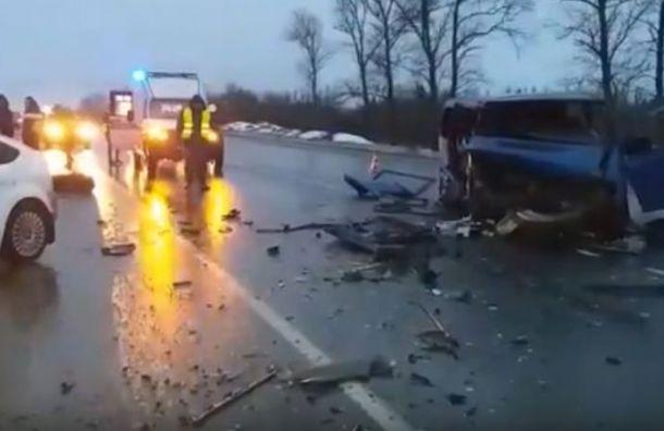 Шесть человек пострадали в жутком ДТП на трассе Петербург — Невель