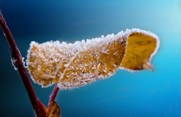 Петербург пережил рекордно холодную ночь