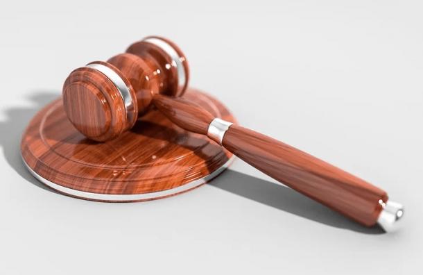 Суд заключил под стражу петербуржца, толкнувшего полицейского на митинге