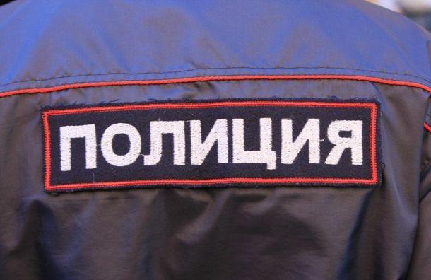 Полиция вернула петербурженке украденного бывшим мужем 3-летнего сына