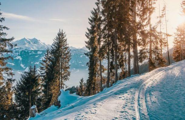 Самая массовая лыжная гонка России прошла в Петербурге