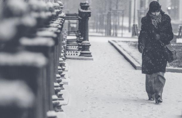 Зима уходить не планирует: на Петербург надвигается метель