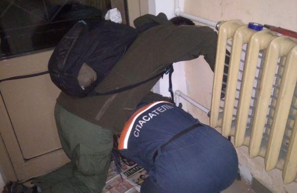 Сотрудники 'Кошкиспаса' спасли забившегося в щель бурундука