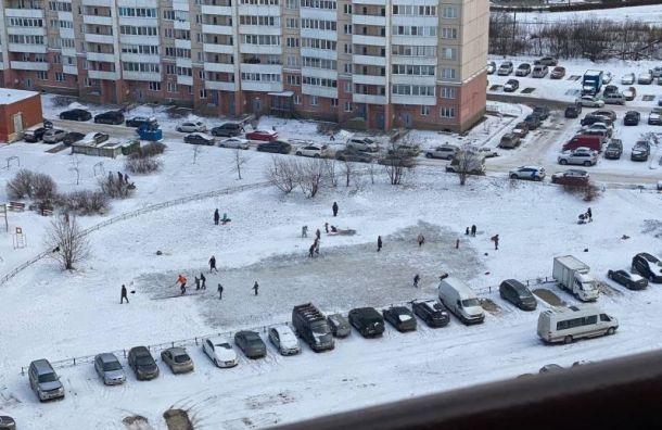 Жители Средней Рогатки превратили замерзшую лужу в каток