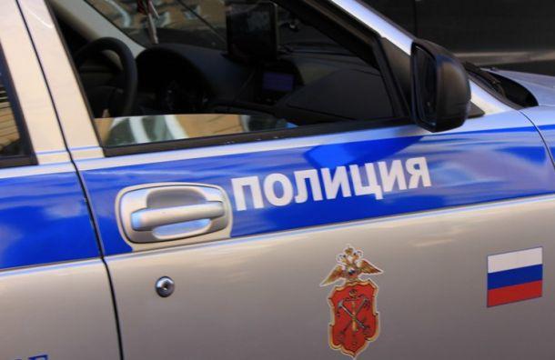 Пассажир Audi попался на даче взятки инспектору ДПС в Петергофе
