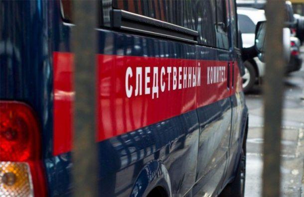 Задержан мужчина, пристававший к школьнице на Дачном проспекте