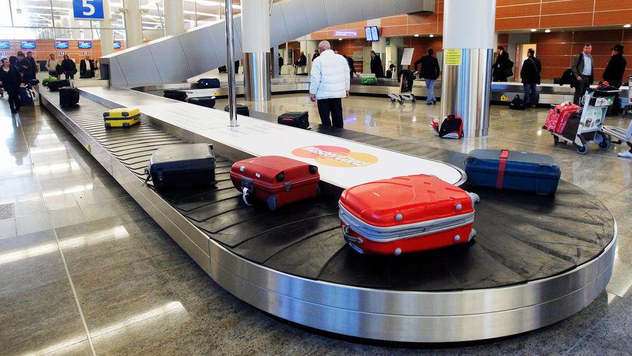 В Госдуме предложили ввести предельное время выдачи багажа в аэропортах
