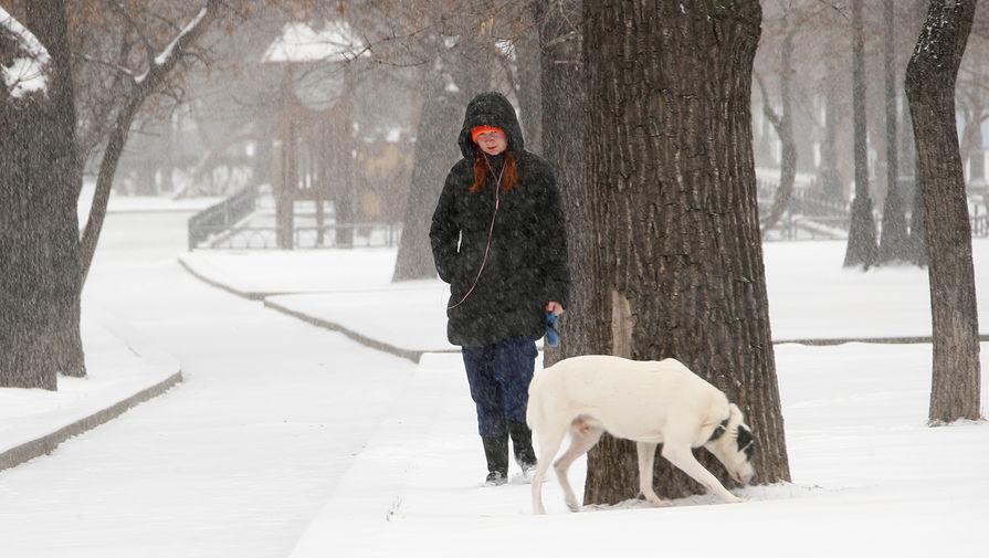 Синоптики пообещали москвичам неделю без метелей и снегопадов