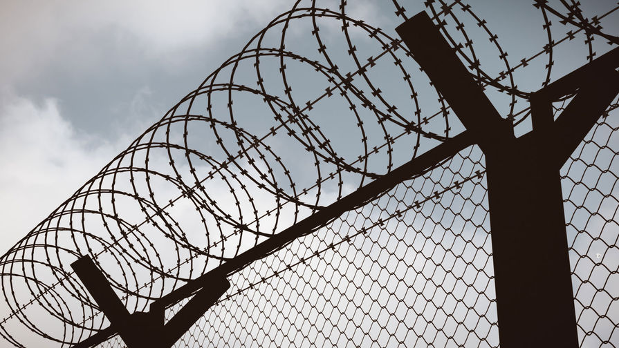 'Скопинский маньяк' вышел на свободу после почти 17 лет заключения