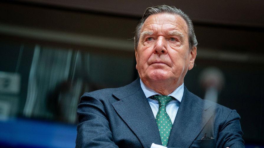 Шредер призвал Германию 'не рубить сук', на котором она сидит