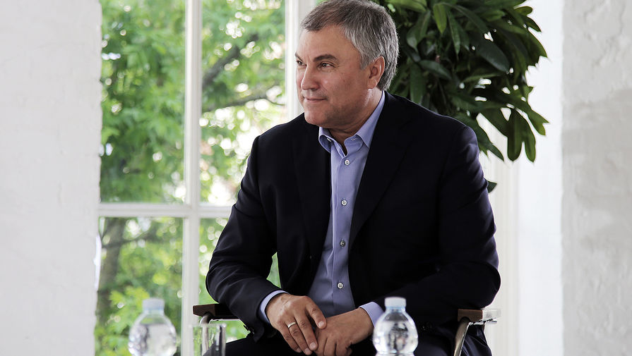 Володин призвал другие страны к осуждению санкций Украины против оппозиции