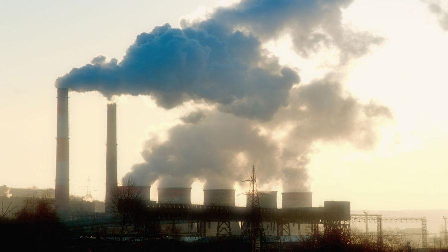 Бизнесу могут ограничить дивиденды за разрушение природы