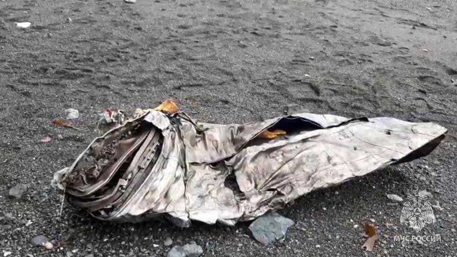 Еще четыре тела нашли на месте крушения Ан-26 на Камчатке