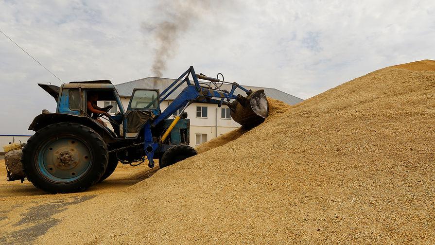Россия ввела квоту на экспорт зерна в 17,5 млн тонн