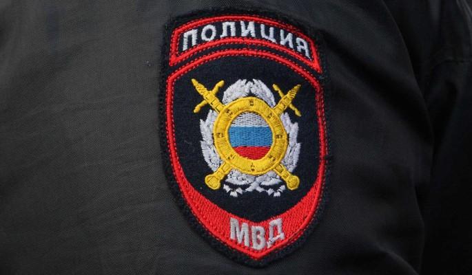 МВД России призвало граждан не ходить на несогласованные акции