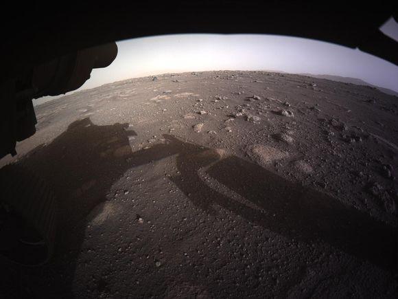 Земной организм оказался способен выжить на Марсе
