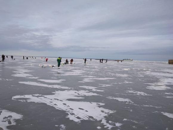 «Жизнь людей не учит»: в Финском заливе оторвало льдину с рыбаками