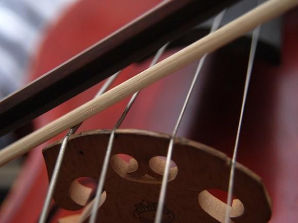 «Да, мы играем много»: в Челябинске страдающие соседи жалуются в полицию на юного скрипача