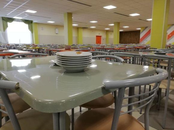 Почти 20 школьников отравились в Смоленской области