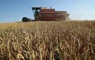 Китай стал главным импортером украинского зерна