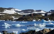 Уникальное открытие: в Гренландии найдены останки растений