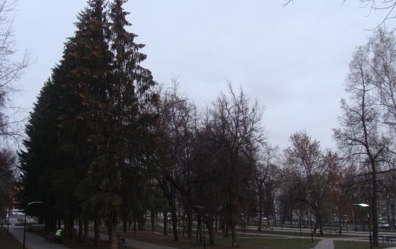 В парках Курска установили видеокамеры