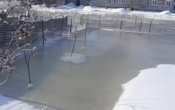 Затопленными огородами займется федеральное ведомство