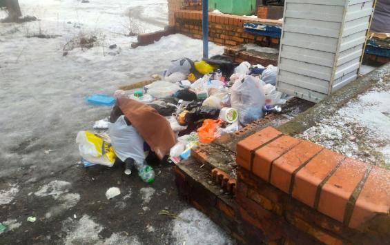 Стихийные свалки переехали на центральные улицы Курска