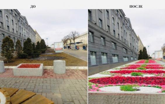 В Курске изменится цветочное оформление улиц