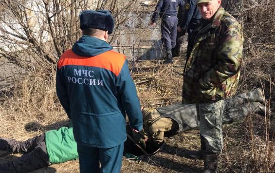В Курской области спасли двух бобров