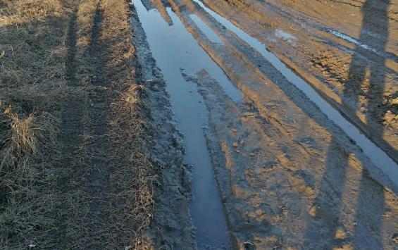 Жители деревни Сотниково нуждаются в дороге