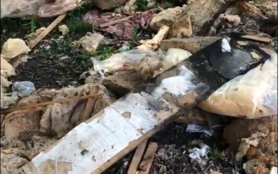 В Курске рядом с ЮЗГУ неизвестные оставили свалку