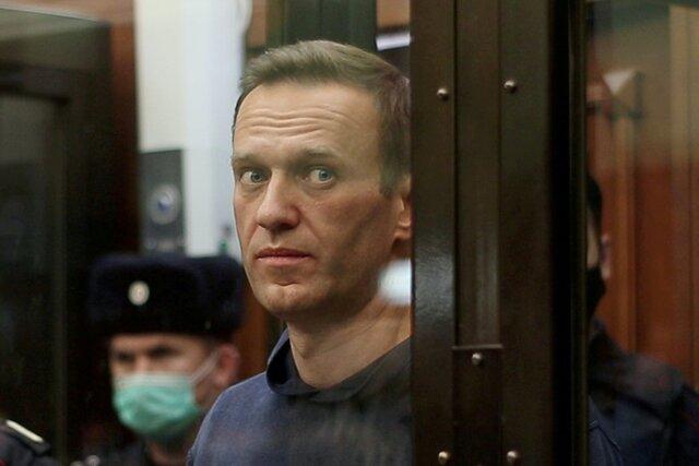 «Моя камера забита фотографиями котов. Их присылают мне сотнями». Навальному отправляют слишком много снимков с котами. Он не понимает, что происходит