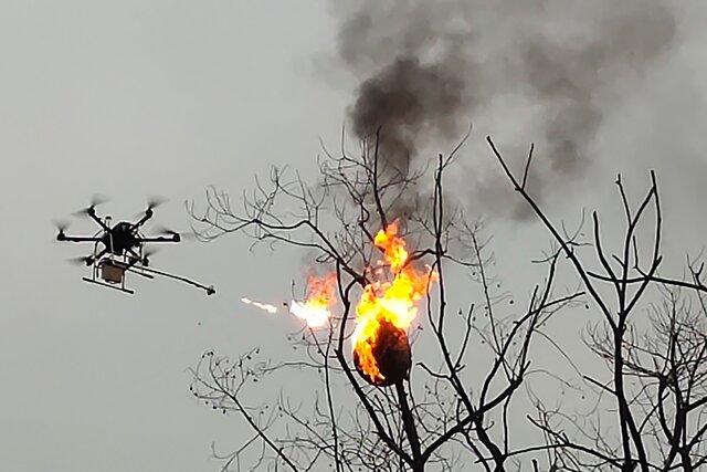 Нет, это не нашествие пришельцев! Это дрон с огнеметом уничтожает осиные гнезда в Китае