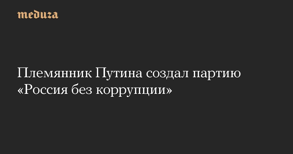 Племянник Путина создал партию «Россия без коррупции»