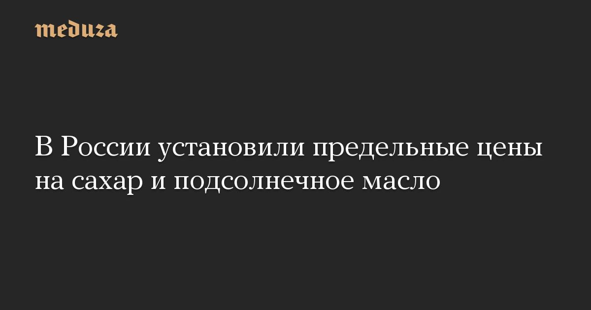 В России установили предельные цены на сахар и подсолнечное масло