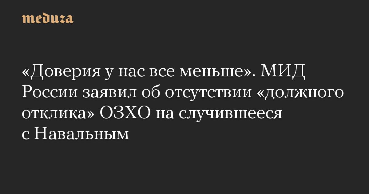 «Доверия у нас все меньше». МИД России заявил об отсутствии «должного отклика» ОЗХО на случившееся с Навальным