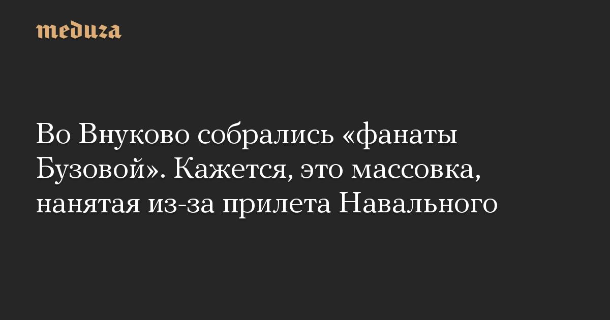 Во Внуково собрались «фанаты Бузовой». Кажется, это массовка, нанятая из-за прилета Навального
