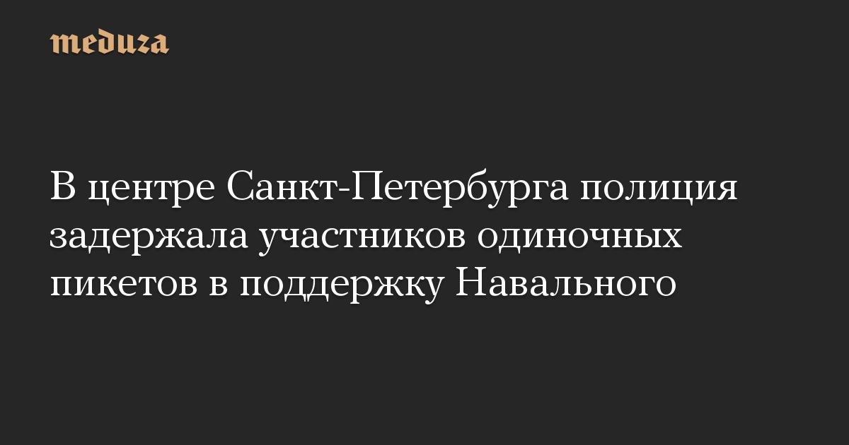 В центре Санкт-Петербурга полиция задержала участников одиночных пикетов в поддержку Навального