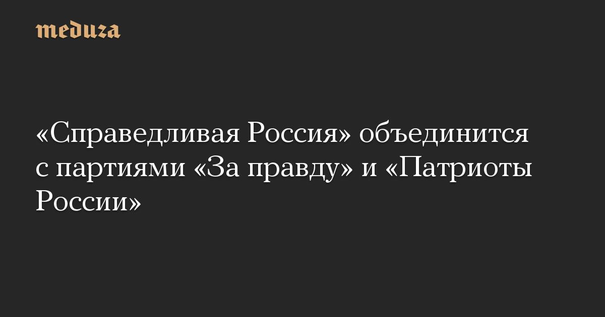 «Справедливая Россия» объединится с партиями «За правду» и «Патриоты России»