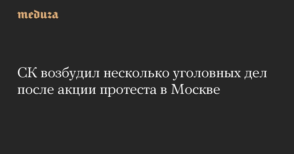 СК возбудил несколько уголовных дел после акции протеста в Москве
