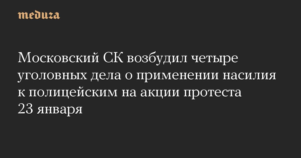 Московский СК возбудил четыре уголовных дела о применении насилия к полицейским на акции протеста 23 января
