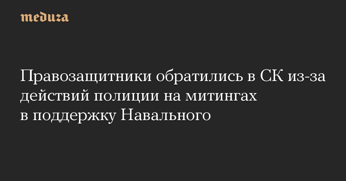 Правозащитники обратились в СК из-за действий полиции на митингах в поддержку Навального