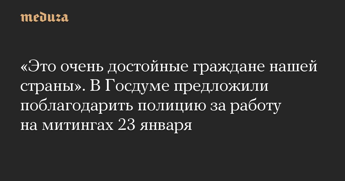 «Это очень достойные граждане нашей страны». В Госдуме предложили поблагодарить полицию за работу на митингах 23 января