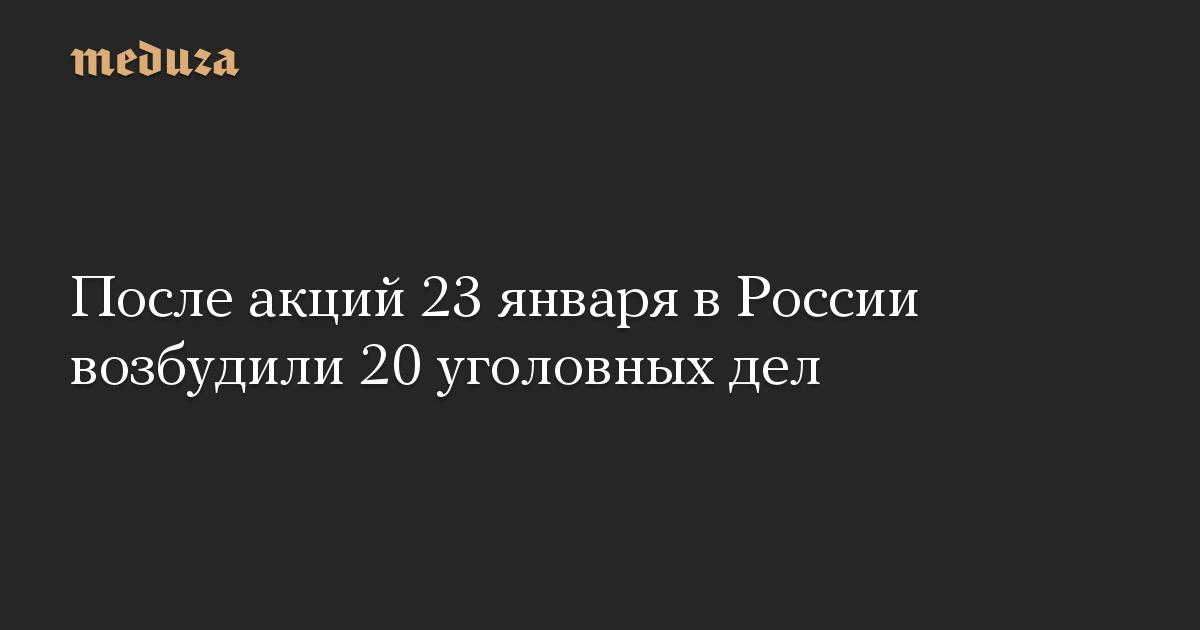 После акций 23 января в России возбудили 20 уголовных дел