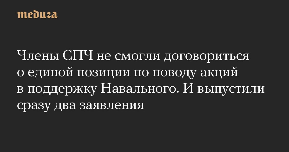 Члены СПЧ не смогли договориться о единой позиции по поводу акций в поддержку Навального. И выпустили сразу два заявления