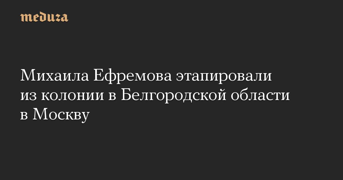 Михаила Ефремова этапировали из колонии в Белгородской области в Москву