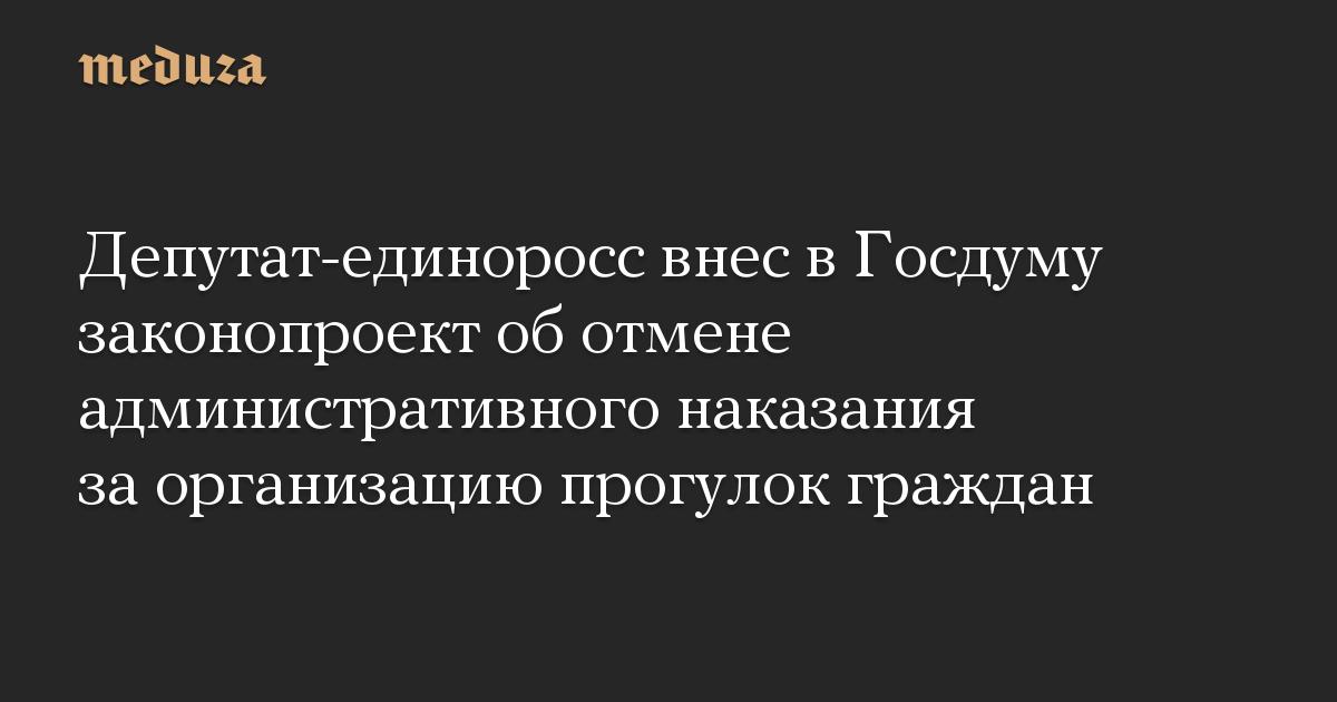 Депутат-единоросс внес в Госдуму законопроект об отмене административного наказания за организацию прогулок граждан