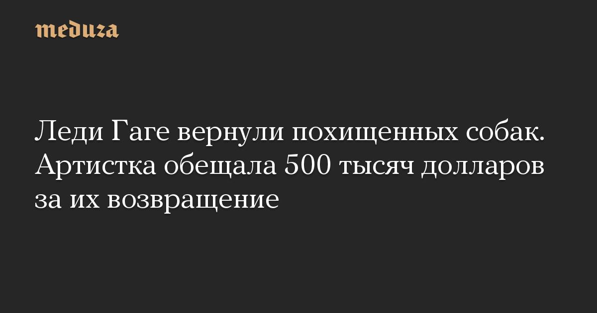 Леди Гаге вернули похищенных собак. Артистка обещала 500 тысяч долларов за их возвращение