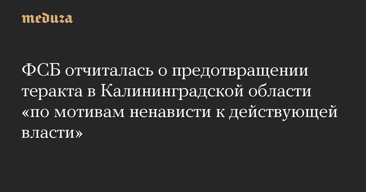 ФСБ отчиталась о предотвращении теракта в Калининградской области «по мотивам ненависти к действующей власти»